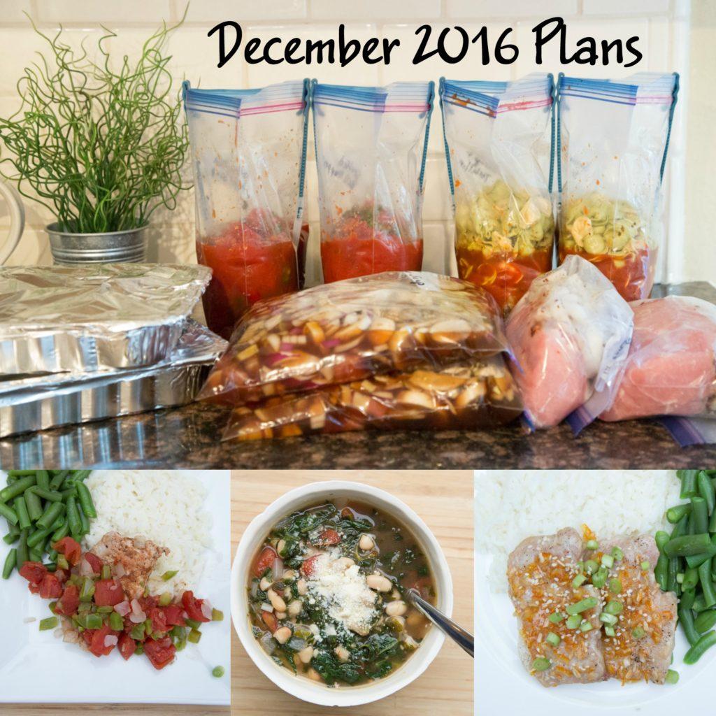 myfreezeasy-december-plans