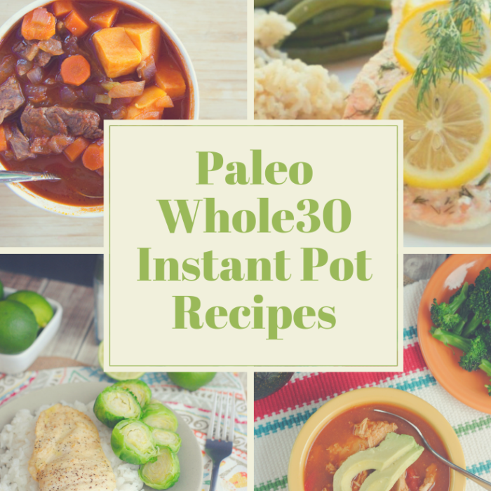 Best Paleo-Whole30 Freezer Friendly Meals for the Instant Pot
